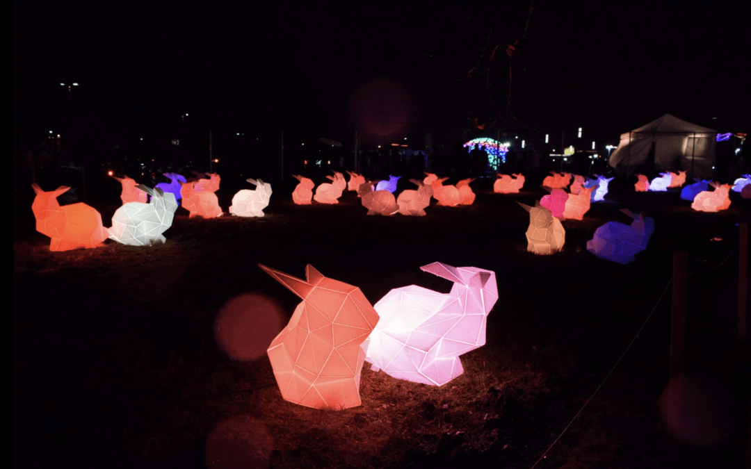 Events – The Portland Winter Light Festival 2018